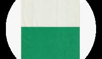 Widerøe 1999
